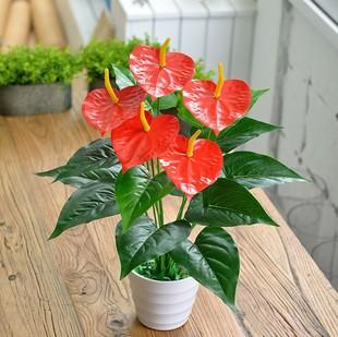 特价仿真红掌小盆景带盆包邮仿真植物盆栽批发假花装饰花花坛布置