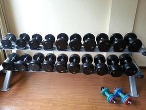 舒华钻石系列专业健身房哑铃架SH-6084 健身房会所专业器械