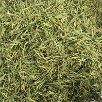明前一级白茶珍稀白茶绿茶特级克250新茶叶2018现货正宗安吉白茶