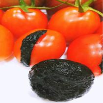 亏本冲量正宗台湾小吃番茄乌梅西红市用蜜饯果脯化应李子果干食品