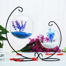 斗鱼缸玻璃小生态悬挂鱼缸装 饰创意摆件小鱼缸迷你缸柏旃桌面鱼缸