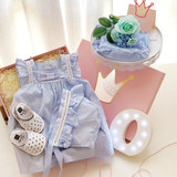 Baby gift box newborn supplies female treasure spring and summer cotton princess dress dress autumn suit full moon gift