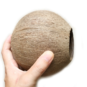 椰子壳老椰壳小开口粗面幼儿园创意diy灯具工艺品装饰品材料产地