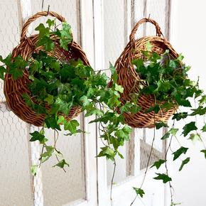 挂墙花盆墙上装饰壁挂创意花篮绿萝田园编织垂吊藤编客厅壁挂花盆