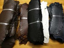 腹皮 手工DIY 水染真鳄鱼皮皮料 美洲鳄圆纹表带外皮料 鳄鱼肚边