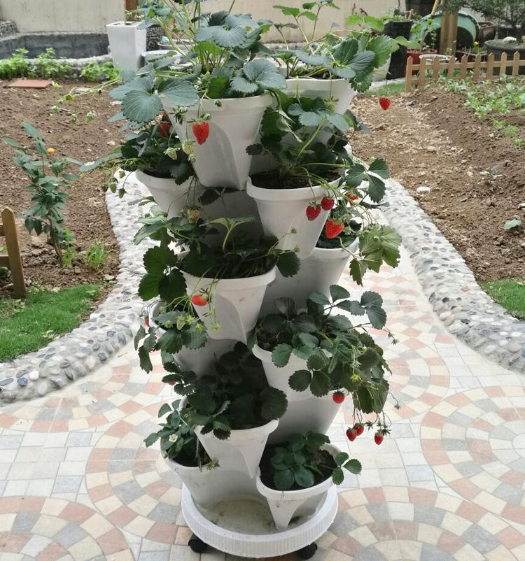 特大阳台种菜盆 立体多层蔬菜种植箱 创意组合花架塑料花盆多肉盆