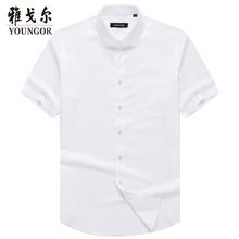 衬衫 男8532 男纯白短袖 雅戈尔男士 短袖 商务经典 Youngor