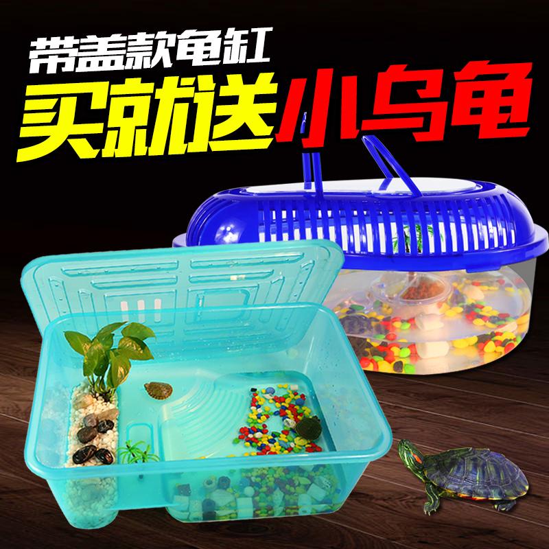 小鱼鱼缸龟缸
