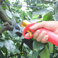 Germany imported fruit tree electric scissors pruning electric shears electric pruning shears trimming garden art high altitude branches shearing
