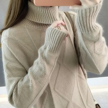 High collar sweater female 2018 new autumn and winter lazy wind hooded sweater loose inside blouse top shirt thickening