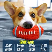 狗狗玩具耐咬发声球拉布拉多大型犬柯基法斗小狗幼犬磨牙宠物用品