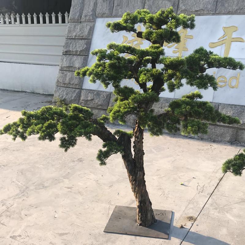 仿真罗汉松树假松树枝迎客松盆景庭院美人松樱花树桃花树香皂花