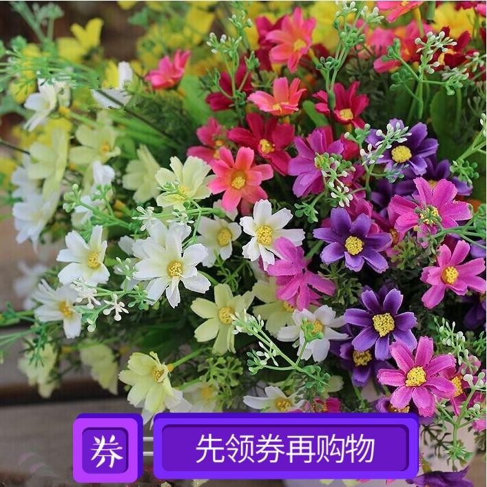 单支田园花卉