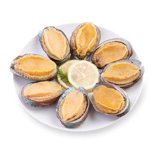 獐子岛冻煮连壳鲍鱼180g(8只装)  海鲜水产 海产品