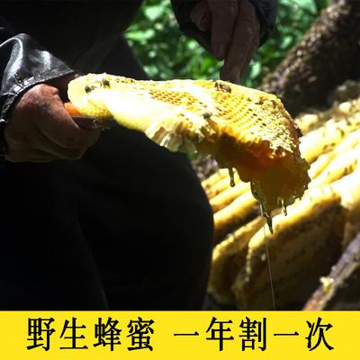 野生蜂蜜纯正天然非冠生园柚子茶芥末酱芥面膜柠檬百香果麦卢卡