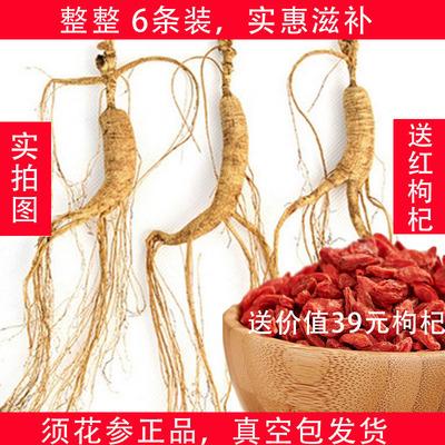 【一个疗程】须花参正品官网西藏特产6条装25克须花参红茶枸杞茶