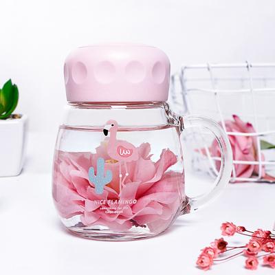 韩版火烈鸟玻璃杯便携可爱家用水杯韩国女学生随手杯简约清新杯子