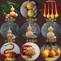 Natural oversized gourd seed large small and medium-sized waist hand twist play balcony planting spring potted grass gold