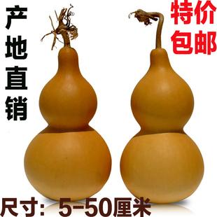 天然葫芦挂件摆件龙头葫芦宝葫芦文玩把玩手捻葫芦特大葫芦真葫芦