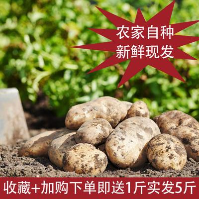 沃益鲜土豆2.5千克马铃薯5斤新鲜农家自?#36136;?#33756;农产品山东特产包邮