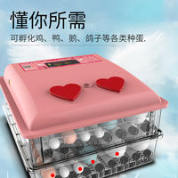 A look at the incubator chicken small automatic incubator household type chicken incubator intelligent chicken hatching box