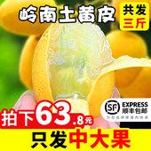 包邮 现货当季新鲜广东岭南黄皮果鸡心黄皮黄弹子孕妇水果 空运