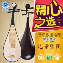 大人儿童琵琶民族弹拨乐器星海琵琶乐器硬木骨花琵琶黑檀轴琵琶