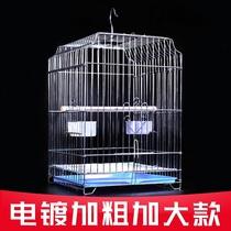 Xuan Feng Tiger parrot étourneau pigeons fauves grand roi General breeding Villa cage