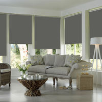 Custom roller blinds blinds shade shading kitchen living room balcony office lift hand pull roll