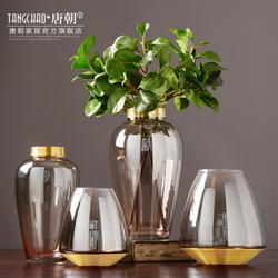 唐朝家居 北欧透明玻璃花瓶欧式创意装饰品客厅插花干花器摆件设