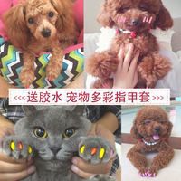 Pet dog nail cover Teddy VIP cat cat nail cover scratching cat claw set 20 capsules to get glue defense