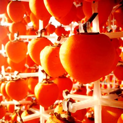 富平柿饼天然霜降吊柿饼农家自制柿子干500g特级陕西特产零食吊饼