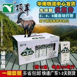 顶羊盒装苗条砖山羊奶1箱x12盒箱 广东+多省包邮发货快沂蒙纯奶源图片