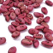 Magic Love Magic bean bénédiction créatif minis phanérogames de gravure avec des mots imprimés avec le bureau de mots planter de petites plantes en pot