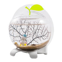 Qi overflow natural desktop ecological fish tank comes with filter LED lights aquarium landscaping mini small fish tank home