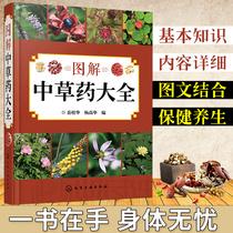 中国医要科技出版社首中成要临床巧用与解说100