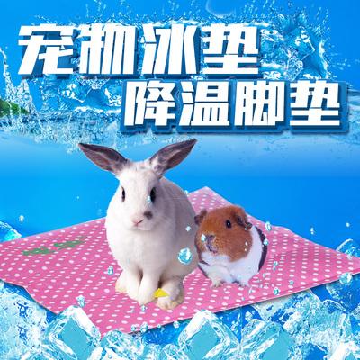 宠物夏天降温用品兔子荷兰猪龙猫仓鼠冰垫降温脚垫散热板冰盒凉席