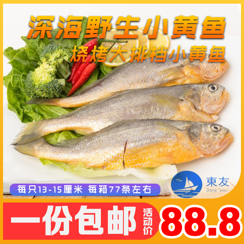 野生黄花鱼黄鱼夜猫子烧烤小黄鱼海鱼新鲜海捕冷冻鲜活生鲜包邮