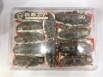 紫菜幼儿园分享无添加健咳轩童零食品40g美伦多芝麻夹心海苔原味