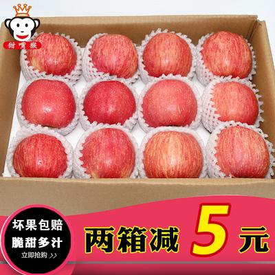 甜嘴猴烟台苹果红富士吃的Apple山东特产新鲜水果脆甜5斤