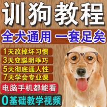 宠物狗训练服务 响片训狗器大小便训练训犬视频教程训狗用品教程