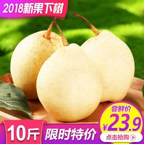 河北鸭梨当季水果包邮新鲜梨子整箱10斤应季水晶梨皇冠梨雪梨香梨