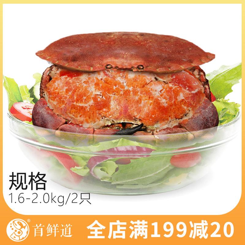 爱尔兰面包蟹