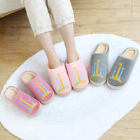 Cotton slippers female cartoon winter Korean cute home bag with home indoor couple Mao Mao shoes men warm home