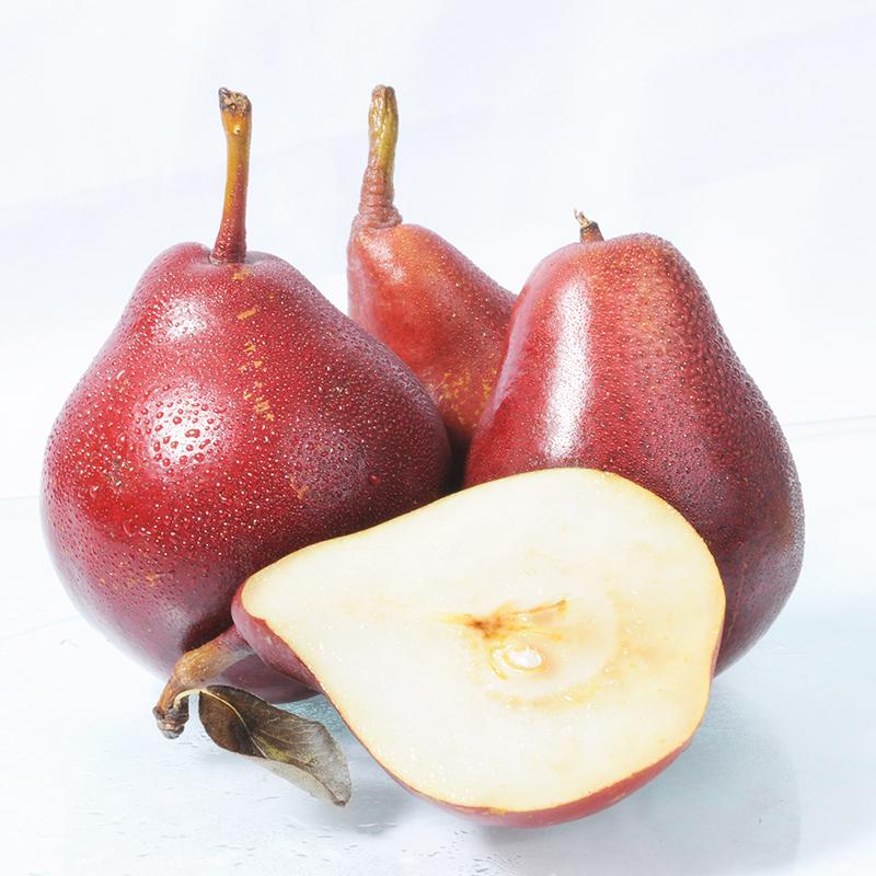 新鲜水果红啤梨包邮5斤太婆梨红梨红皮梨啤酒梨子