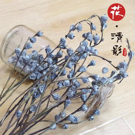 尤加利果 天然真花干花干果蓝桉果插花挂墙装饰搭配文艺花材道具