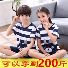 女童睡衣夏天薄款套装男童短袖纯棉中大童加肥加大码12-15岁胖童