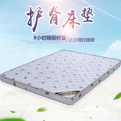 天然椰棕床垫1.8m床棕垫1.5经济型偏硬棕榈床垫薄儿童1.2定做折叠