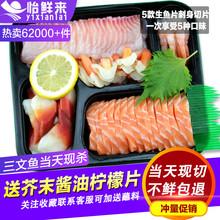 新鲜生鱼片刺身拼盘500g 进口冰鲜三文鱼刺身中段刺身套餐鲷鱼片