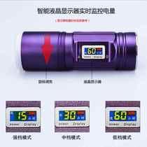 诱鱼灯钓鱼灯夜钓紫光渔具超亮充电蓝光手电筒强光台钓黄光360W